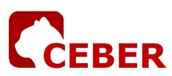 logotipo de CEBER PROCESOS INDUSTRIALES SL